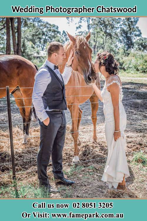 Photo of the Groom and the Bride caressing a horse Chatswood NSW 2067