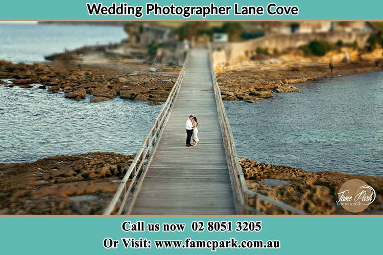 Photo of the Groom and the Bride at the bridge Lane Cove NSW 2066