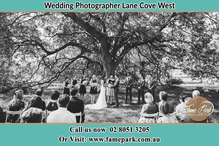 Wedding ceremony under the big tree photo Lane Cove West NSW 2066