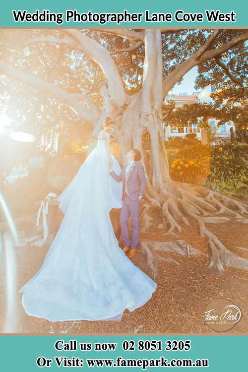 Photo of the Bride and the Groom looking each other besides the tree Lane Cove West NSW 2066