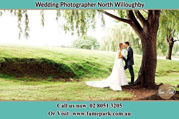 Photo of the Bride and the Groom kissing under the tree North Willoughby NSW 2068
